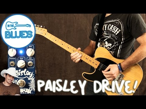 Wampler Pedals - The Paisley Signature Overdrive