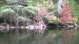 Backcountry Lake Superior Canoe Camp Part 1