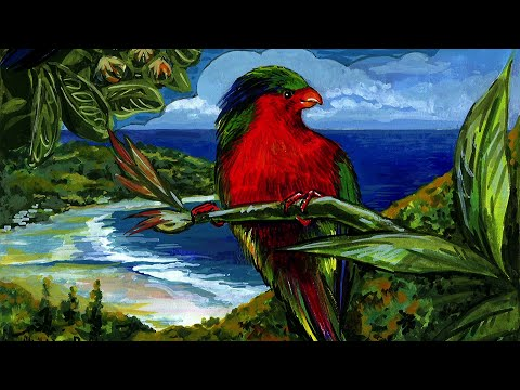 Les oiseaux d'un paradis - Version 1 - FR (2012)