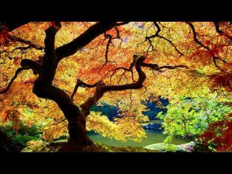 U-Recken - Lost Paradise [HD]