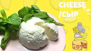 РИКОТТА Как сделать домашний сыр из молока за 30 минут 3 ингредиента вода Пошаговый рецепт