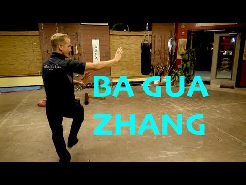 Ba Gua Zhang: An Ancient Art: Ba Gua Zhang: The Gentle Fist
