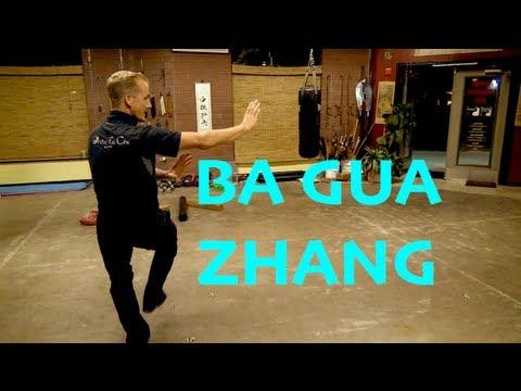 Tai Chi vs Ba Gua movie fight scene - YouTube