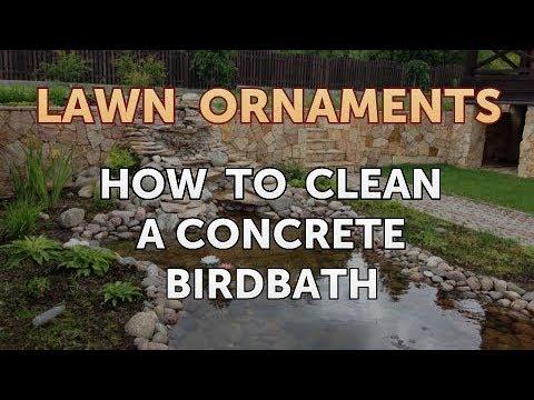 How To Clean A Concrete Birdbath