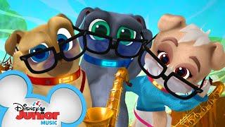 Crackly Crab Music Video 🦀 | Puppy Dog Pals|  Disney Junior