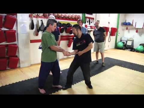 Positive Circle in Taijiquan  (Australia Workshop)