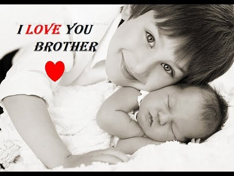 I Love You My Brother New Best Whatsapp Status In Hindi Youtube