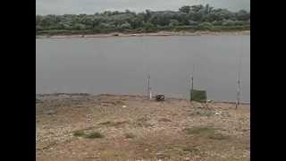 Рыбалка на Оке под Серпуховым. Рыбалка с Мишаней #4 2016г. Много судаков