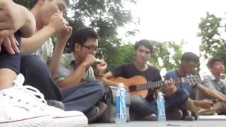 Cánh Bướm Vườn Xuân - harmonica cover