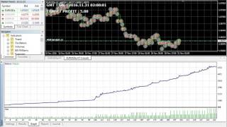 The Best Forex Algorithm makes 1000% in One Month - No Forex Knowledge Required