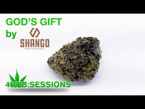 Strain Review - God's Gift by Shango Cannabis | 4DUB Sessions