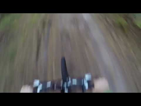 Bear Chases Mountain Biker In The Woods