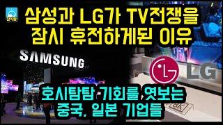 삼성과 LG가 TV전쟁을 잠시 휴전하게된 이유 / 호시…