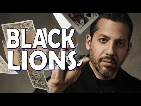 Deck Review - Black Lions playing cards by David Blaine