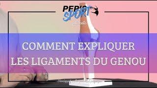 COMMENT EXPLIQUER LES LIGAMENTS DU GENOU
