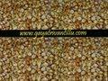 Chikki - Peanuts Toffy - Andhra Telugu Sweets