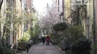 Amsterdam, Citywalk - Netherlands HD Travel Channel