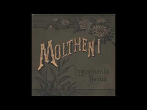 Moltheni feat Ilenia Volpe - In centro all'orgoglio mp3