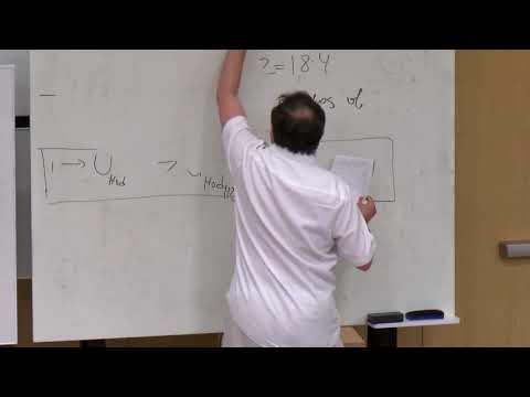 Alexander Goncharov: Quantum Hodge Field Theory