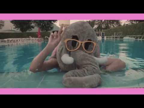 Cli - L' elefante col tutù