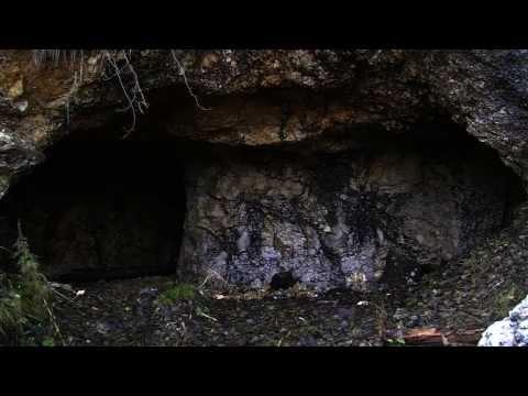 Cronache, Canope, miniere di blenda e galena (Giau)