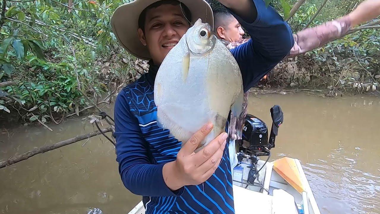 Sacando muchos peces con la mejor masa para pescar.