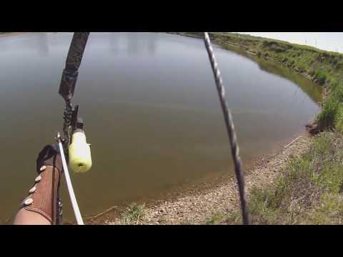 PSE KINGFISHER  Test Run Bowfishing