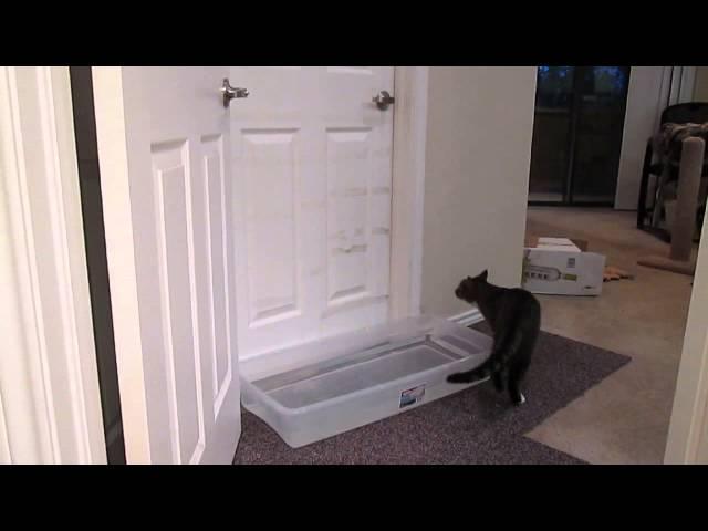 Mulder opening doors