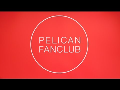 PELICAN FANCLUB - 記憶について(MV)