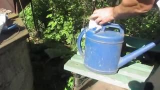 Как незаметно уничтожить дерево или засушить на корню + видео
