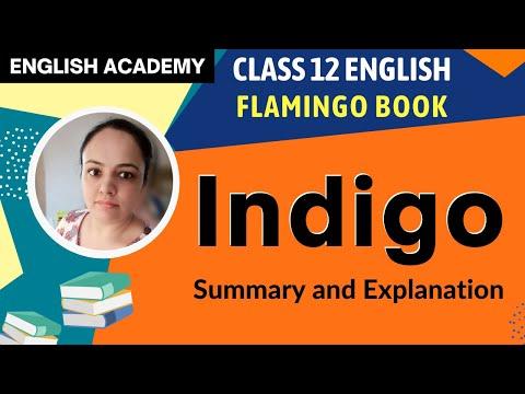 Indigo -  Class 12 English Flamingo - NCERT Book Explanation Summary