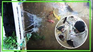 Cách Lắp Máy Lọc Nước Cho Hồ Cá Koi hoàn chỉnh #2