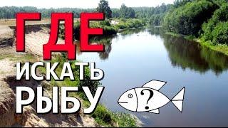 как найти рыбные места на реке...Рыбалка на спиннинг... и конкурс!