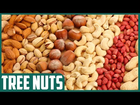 What is the Effect of Tree Nuts on Cholesterol, Triglycerides? New Research