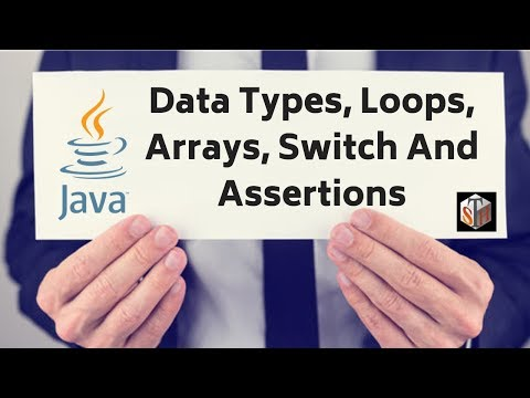 data-types,-arrays,-switch-&-assertions-in-java-(tutorial-#2---part-1)