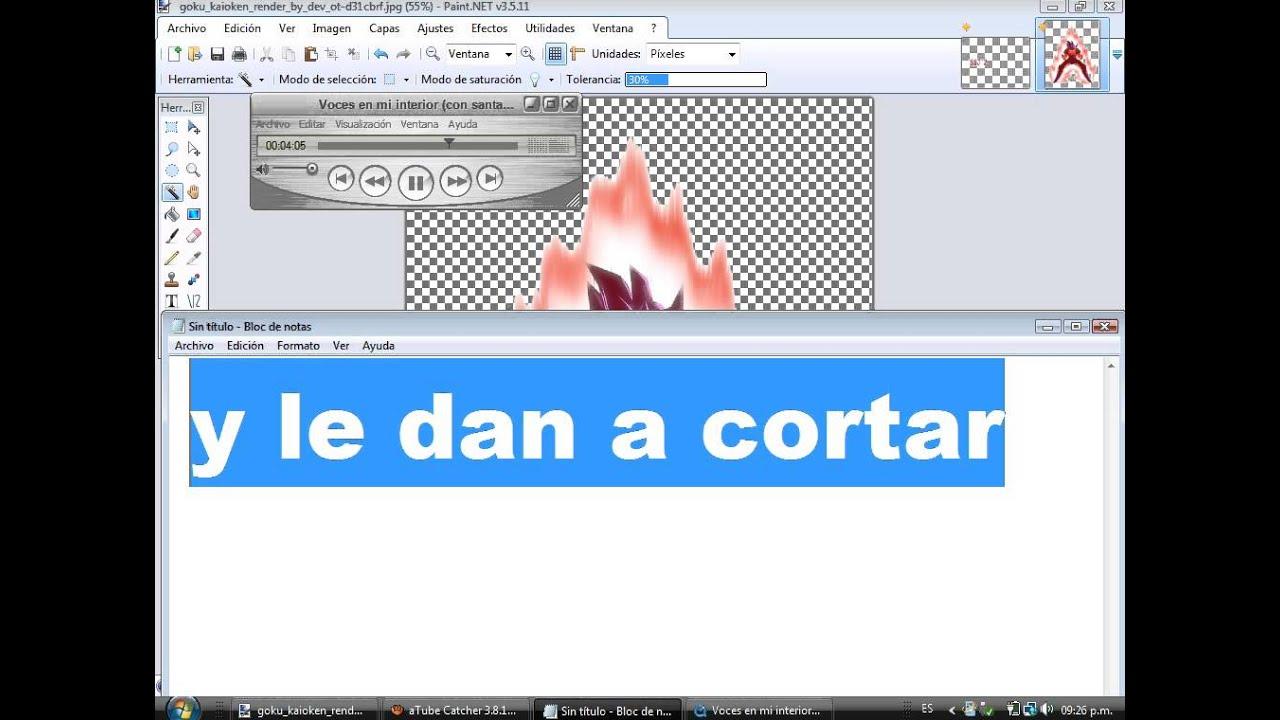 Como Hacer Una Imagen Png (sin Fondo) En Paint.net