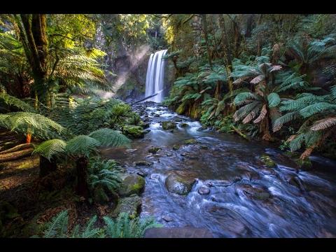 Magica atmosfera di natura incontaminata suoni naturali for Immagini natura gratis