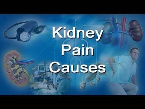 Watch on kidney infection location diagram