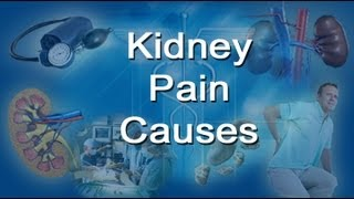 Kidney Pain Causes - If Your Back Hurts, It Could Be One Of These Kidney Problems