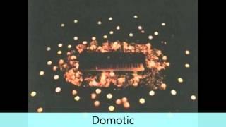 Domotic - Bye Bye - Consilium_industri