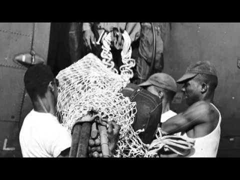 Courage Has No Color--90 second book trailer - YouTube