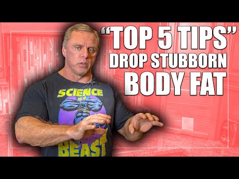 5 Essential Tips How to shed Excess Fat and Reclaim Your Sanity