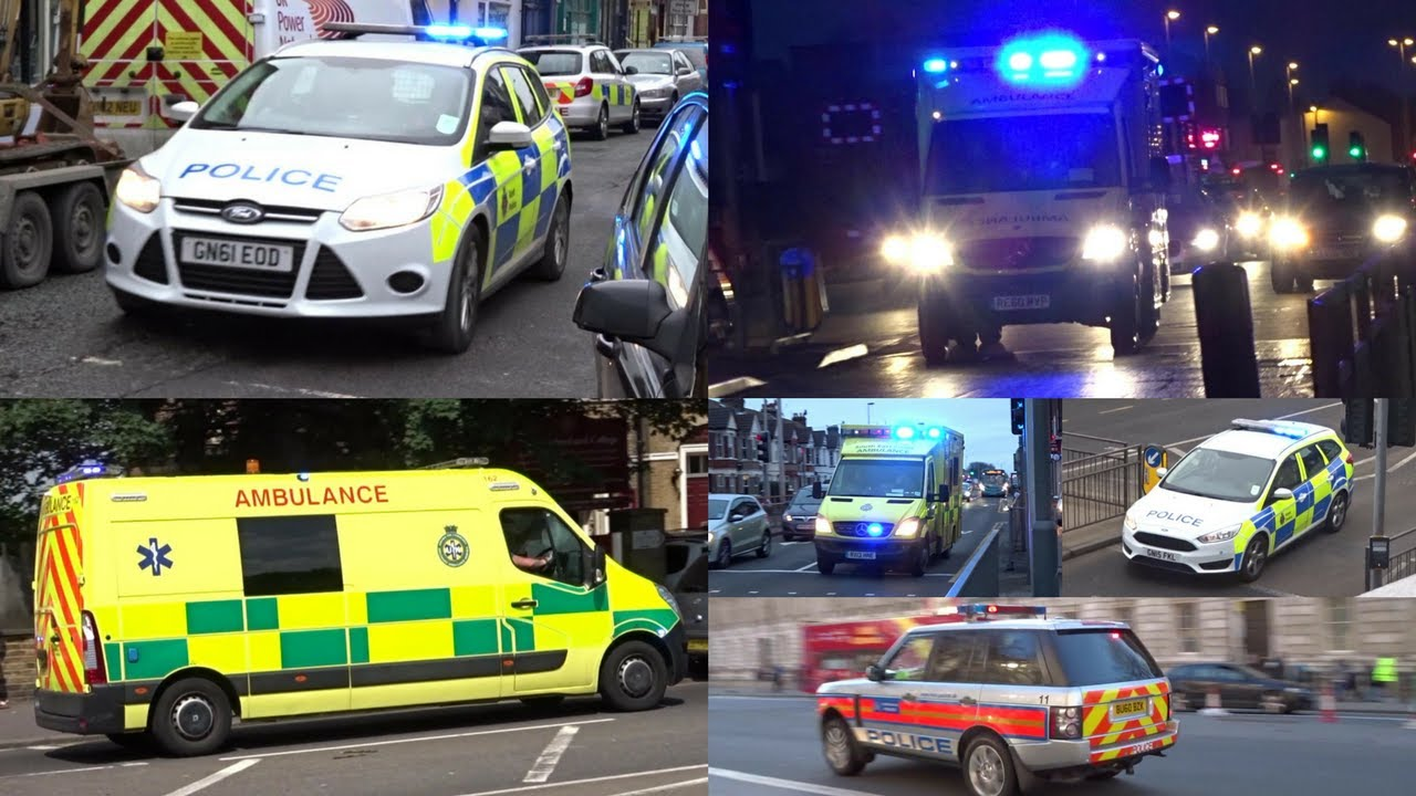 emergency services responses Information and technical assistance for the emergency services sector on protecting critical community infrastructures from threats and vulnerabilities.