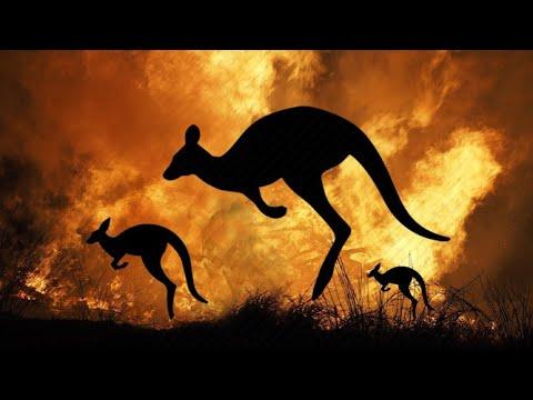 Australian Fire Song // Regeneration By Biba, M@kossa, Waiyari