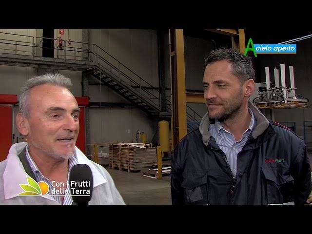 Puntata del 3/11/19 – 3° parte – Kiwi: qualità per battere la concorrenza
