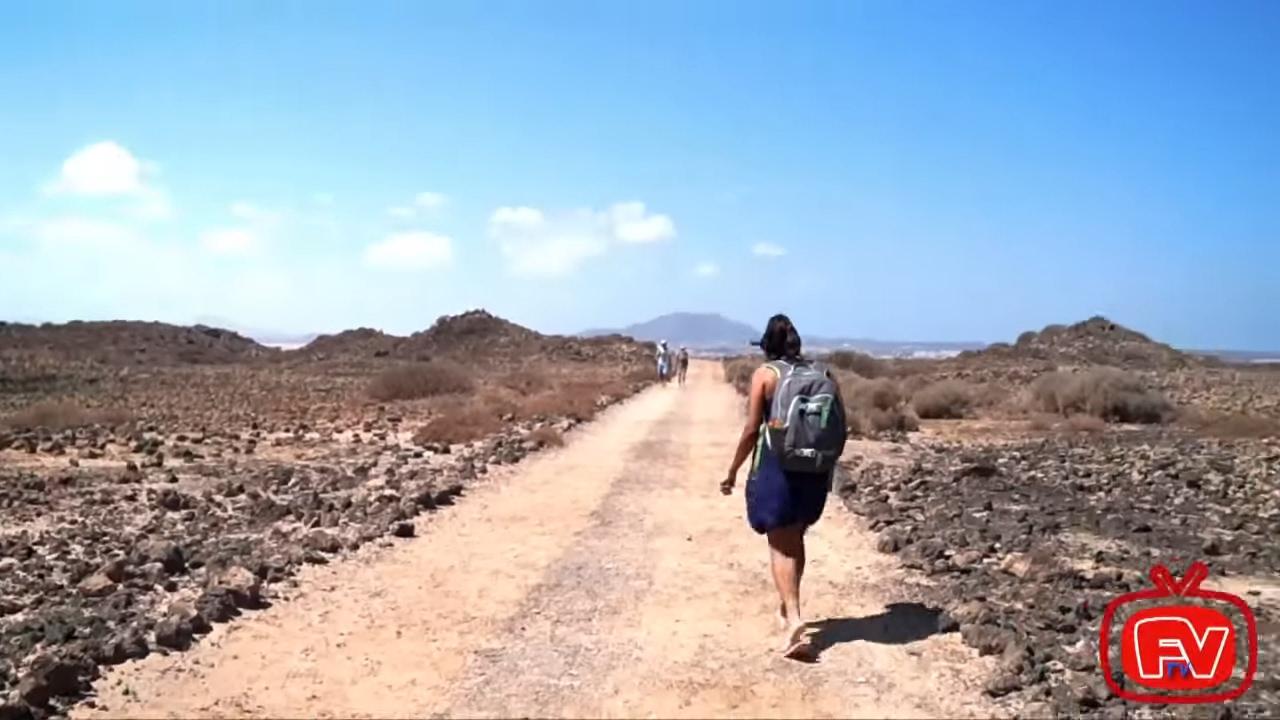 Lobos Fuerteventura