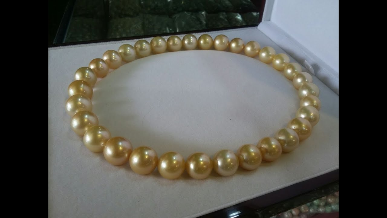 sku pearls aa cultured akoya necklace golden light pearl c saltwater