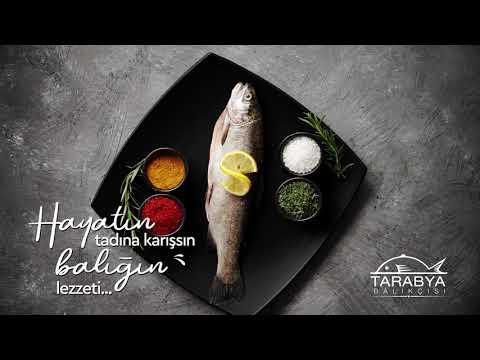 Tarabya Balıkçısı - Balık 5