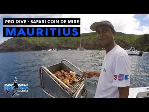 Safari Coin de Mire 2016