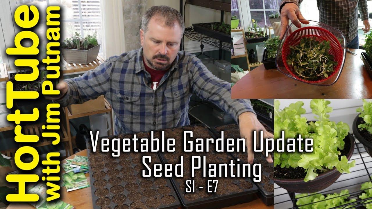Weekly Vegetable Garden Update Starting The Summer Seeds S1